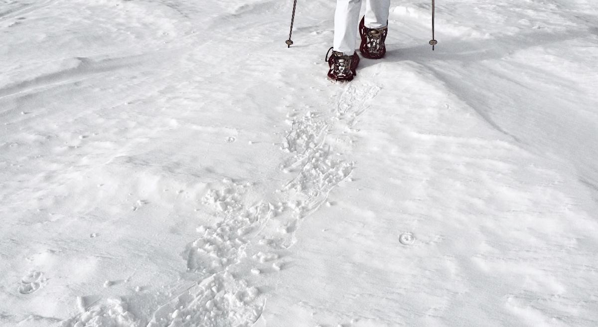 Schneeschuhwandern Gastein Foto: Kristina Erhard