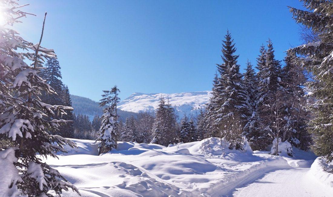 Winterwandern Angertal, Foto: Kristina Erhard