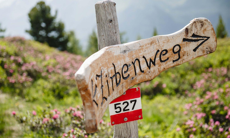 Schild zum Zirbenweg am Graukogel
