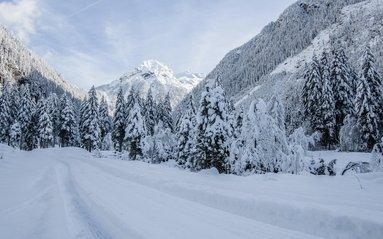 Auszeit im Schnee