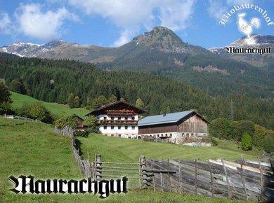 Maurachgut