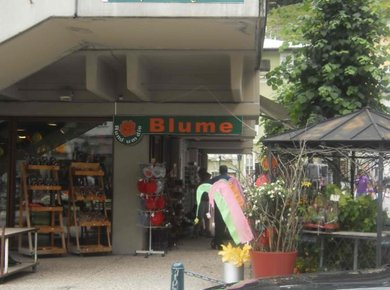Blumen Fillafer